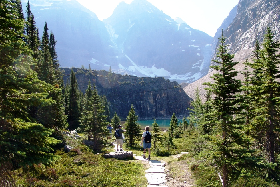 The start of the Lake Oesa hike from Lake O'Hara