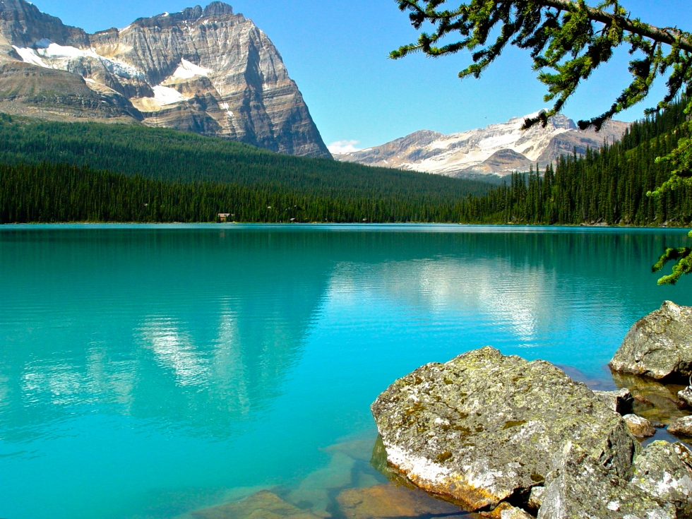 Lake O'Hara - Calm and Green