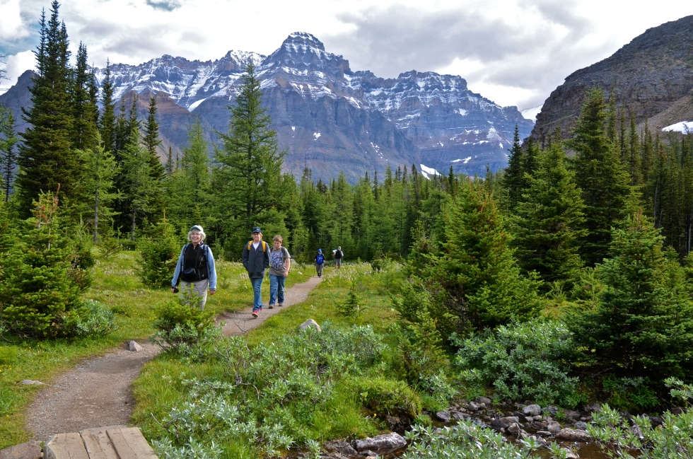 Hiking from Lake O'Hara to Lake McArthur - 8km circuit - Elevation gain 310m
